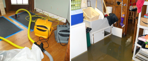 Water Damage Walled Lake