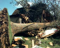 Michigan Storm Damage
