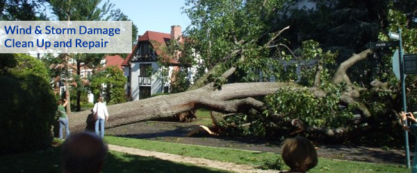 storm damage repair oakland county